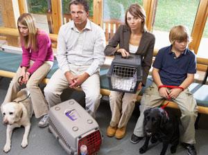 10 Razones para llevar a tu perro al veterinario