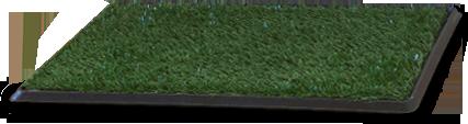 Dog39 stuff soluciones innovadoras para tu mascota for Green carpet png
